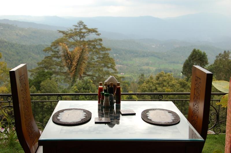 View from Aditya Home Stay Dining Area.Munduk Bali