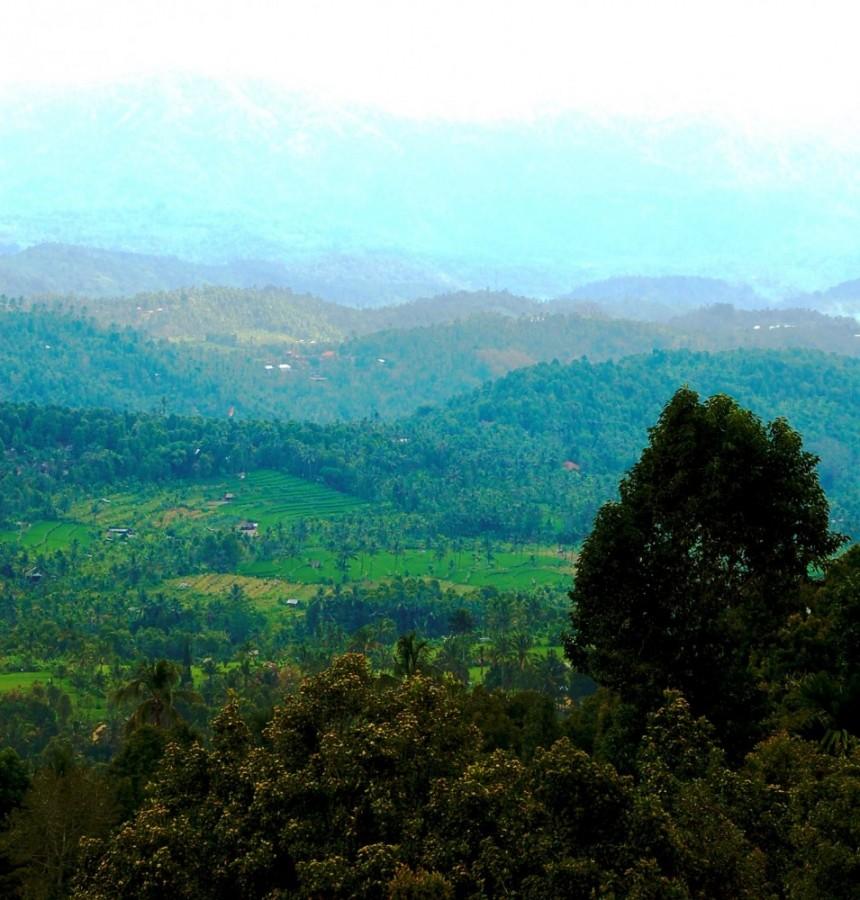 View of Munduk from Aditya Home Stay. Munduk Bali