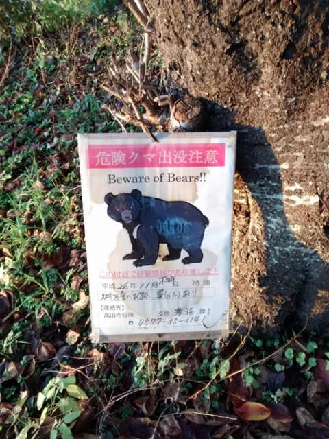 Beware of Bear! Not exactly what you expect to see during a town walk in Takayama!