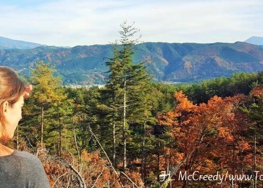 Takayama: The Walk-able, Hike-able Tourist Trap Town You'll be Glad You Fell Into
