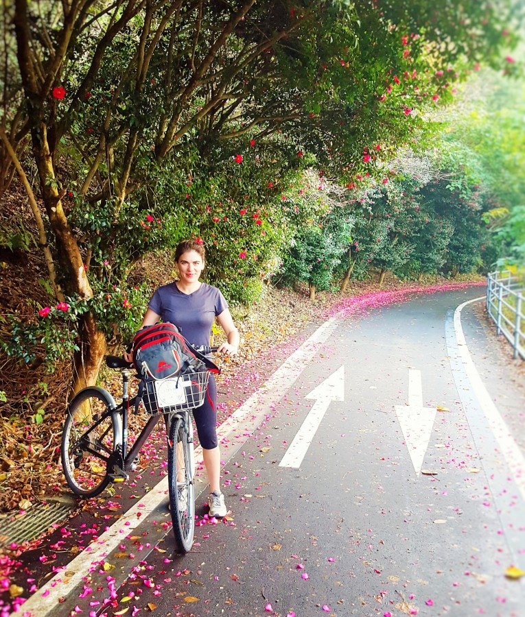 Azalea Petals along the Shimanami Kaido Cycling Route