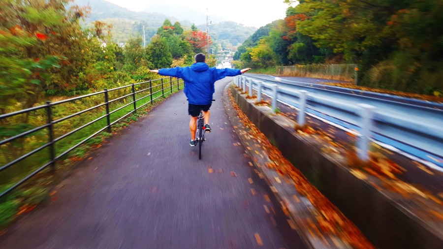 Fall Foliage along Shimanami Kaido Cycling Trail, Japan