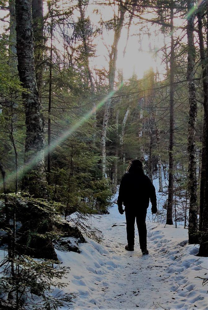 Walking along Shelburne trails after first snow, December 2016