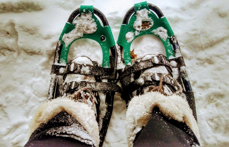 Snow shoeing in Gorham, NH